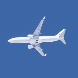 【航空機】JAL・ANAなど航空便の大幅減便(新型コロナウイルス感染影響)