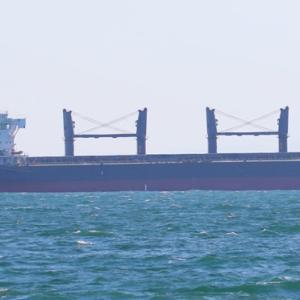 【船舶】ばら積み貨物船 PARADISE ISLAND