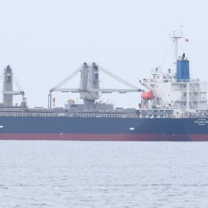 【船舶】一般貨物船PULAU AOIと貨物船金寿丸