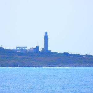【風景写真】角島灯台と日本海荒波!