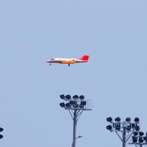 【航空機】海上自衛隊岩国航空基地 多用機U-36Aを見ました!