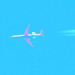 【航空機】翼裏の赤い旅客機は?