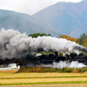 【鉄道写真】JR西日本濃黄色115系電車/山陽本線大畠瀬戸とSLやまぐち号運転再開ニュース