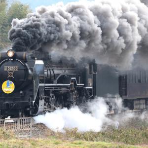 【鉄道写真】SLやまぐち号は8月1日より運転再開します~♪