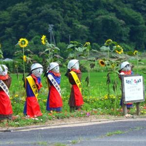 夏の交通安全母の会6人衆(阿東町嘉年下)