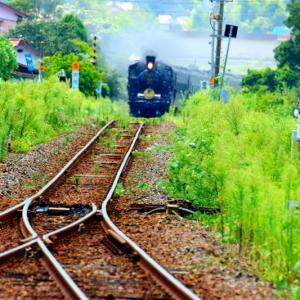 【鉄道写真】猛暑のC571健在です~♪