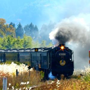 【鉄道写真】SLやまぐち号D51-200号機牽引の素晴らしい秋風景