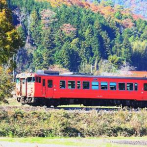 【鉄道写真】紅葉の下、朱色気動車キハ40-2072が走る!
