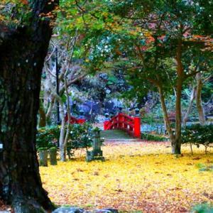 自然の芸術 大寧寺の紅葉が素晴らしい~♪