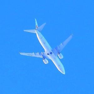 【航空機】JAL機315便JA333Jを初撮!(令和3年)