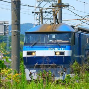 【鉄道写真】JR貨物EF210形電気機関車(山陽線南岩国)
