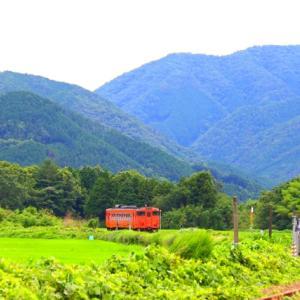 【鉄道写真】緑の中の朱色キハ40-2042気動車~♪