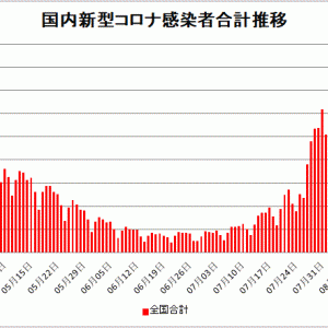 【新型コロナ情報】8月9日新たな感染者 国内計12,073人 東京都2,884人 大坂995人