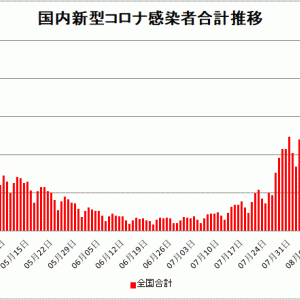 【新型コロナ情報】8月15日新たな感染者 国内計17,832人 東京都4,295人 大坂1764