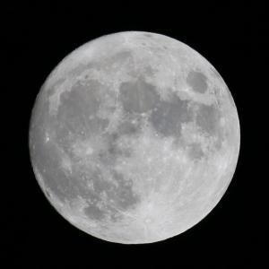 中秋の名月とハーベストムーン