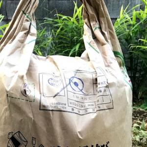 タマネギ栽培の予定地に米ぬかをすき込んで土の回復