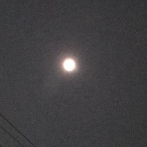 今日こそ、満月!