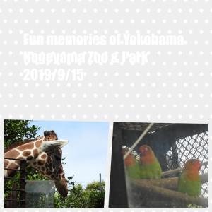 9月15日野毛山動物園&公園