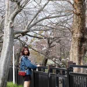 KAWAIICollection 関西の「せいな」さん! ─ 3月の大阪城公園 ─