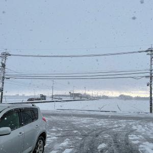 雪が激しく降った朝。