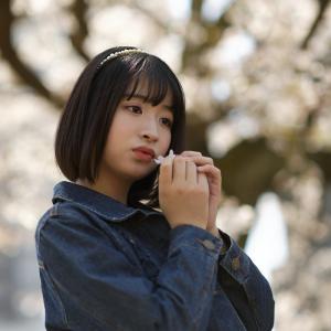 COCOROちゃん その45 ─ 桜よ咲いてよ咲いて咲いてお散歩撮影会2021 ─
