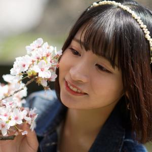 COCOROちゃん その50 ─ 桜よ咲いてよ咲いて咲いてお散歩撮影会2021 ─