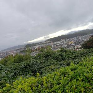 朝からまた雨でした