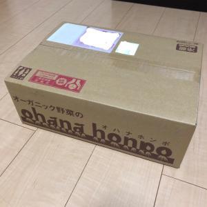 【ふるさと納税返礼品】大分県臼杵市の有機JAS認証オーガニック野菜セット(8品目)がohana本舗から届きました!