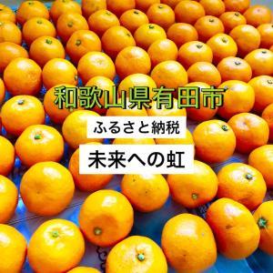 【ふるさと納税】和歌山県有田市に寄付!絶品みかん「未来への虹」がビックリするくらい大量にもらえた!