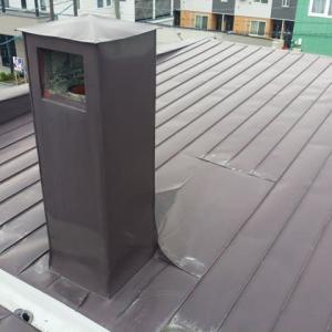 普通のスノーダクト屋根のはず