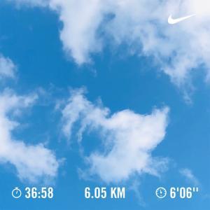 【ランニング日記】久しぶりの青空。秋晴れですね。