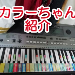 俺のキーボード「カラーちゃん」紹介