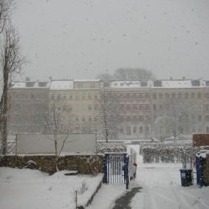 ドイツ木工研修留学 38:雪