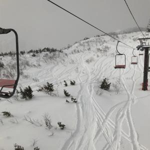 白馬五竜・47スキー場、  2020年1月20日  レポート