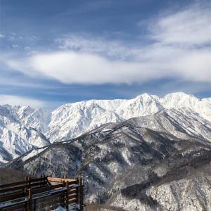 白馬岩岳スキー場   2020年1月22日 レポート