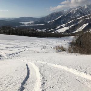 白馬岩岳、 2月19日  レポート 残パウ20cm、カービングも快適で最高!