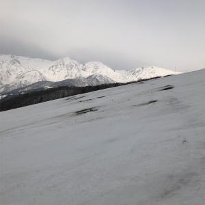 白馬岩岳、2月25日レポート デコボコのガリガリ、最悪のゲレンデ状態!