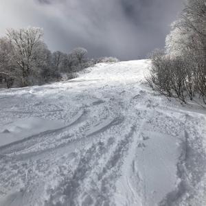 白馬コルチナスキー場 19-20シーズンレポート 滑走日数 6
