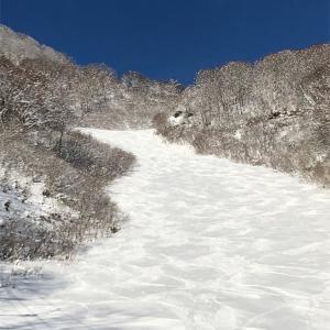 シーズンアウトとなり、雪山ロスの日々。今シーズンのパウダー画像まとめ。
