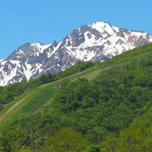 白馬バレーの各スキー場、グリーンシーズン営業まとめ