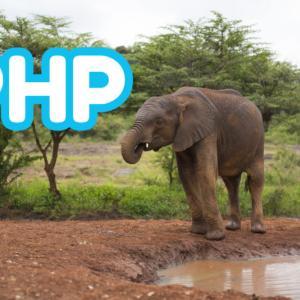 【PHP】error_reporting(エラー出力レベル)の設定方法