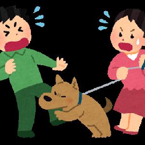 痛っ!犬に噛まれたらどうする?応急処置と気をつけるべき病気