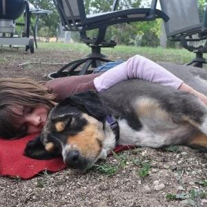 犬と一緒に寝るという幸せな暮らし【ポイントは2つ】