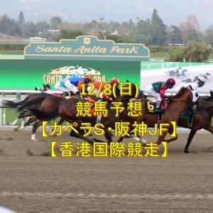 【カペラS】12/8(日)競馬予想【阪神JF・香港国際競走】