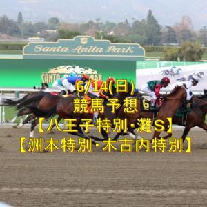 6/14(日)競馬予想【灘S・ダート平場レース】