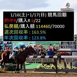 1/16(土)・1/17(日)競馬回顧