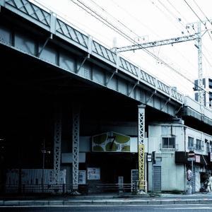飼い主散歩~神戸編 (3)