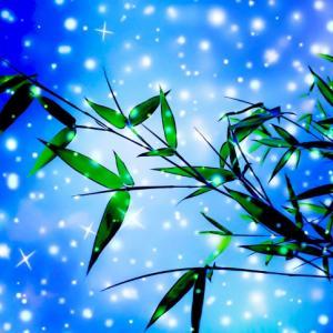 星に願いを…再び