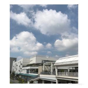 レポート①・骨格ナチュラルさんと同行ショッピングin湘南辻堂・アラ還トータルアドバイザー