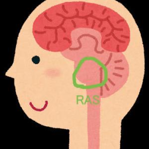 脳のフィルター「RAS」を使って幸せ情報を取り入れよう